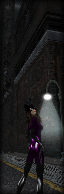 Catwoman on Gotham Street