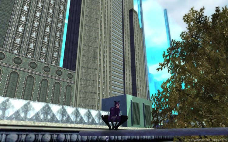city-of-heroes-catwoman