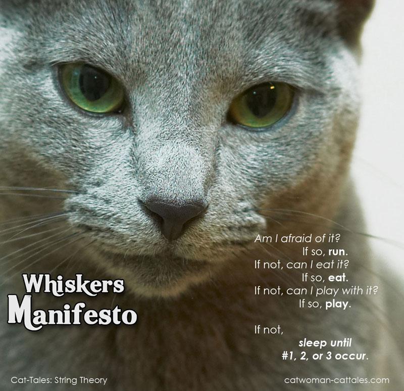 Whiskers Manifesto