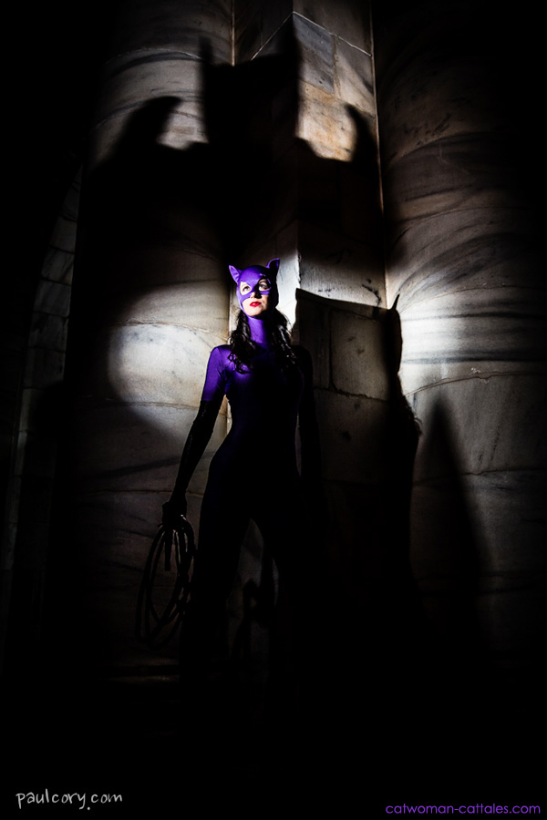 In the Shadow of the Bat Catwoman