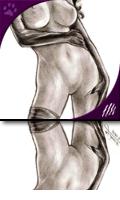Catwoman Black & White: Sketch
